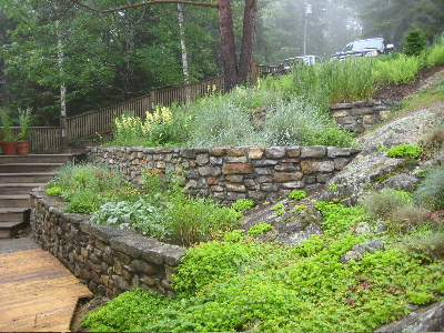 Onward through the rain and fog | Hedgerow