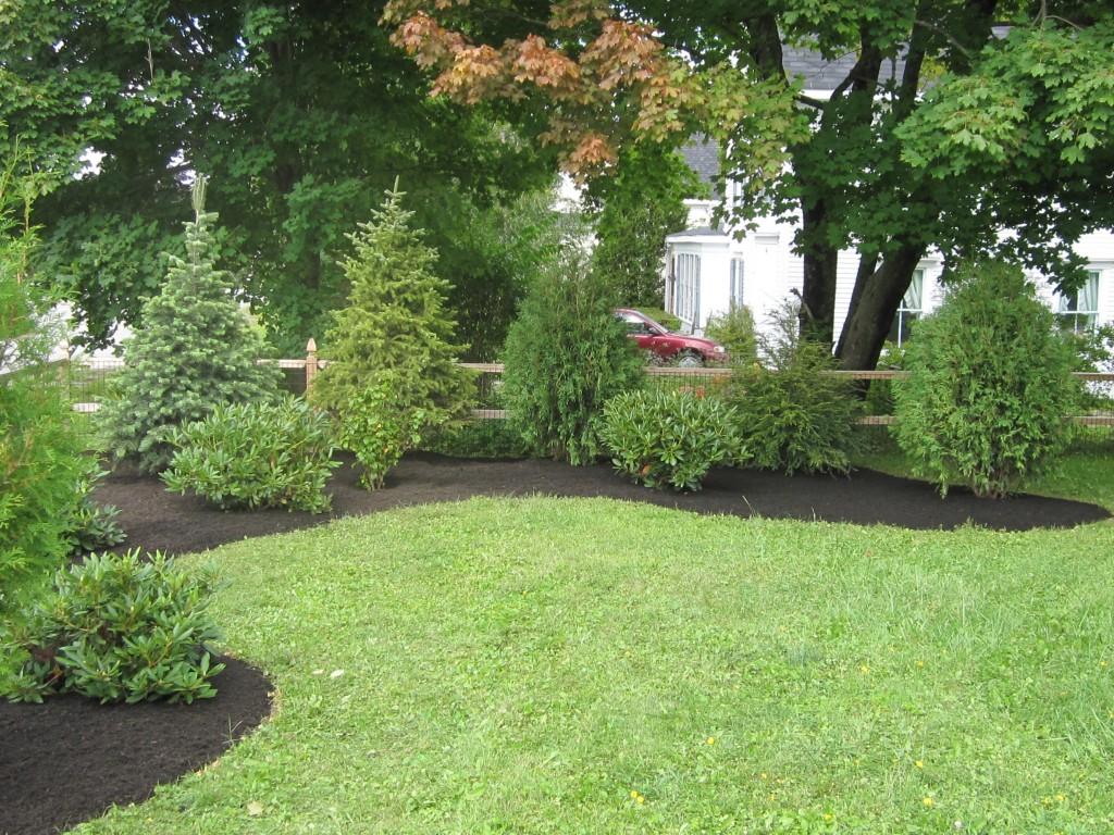 Blog hedgerow food plants gallery and landscape for Garden design generator